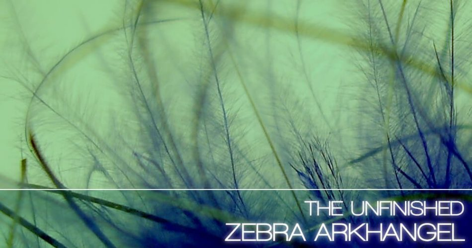 The Unfinished Zebra Arkhangel feat