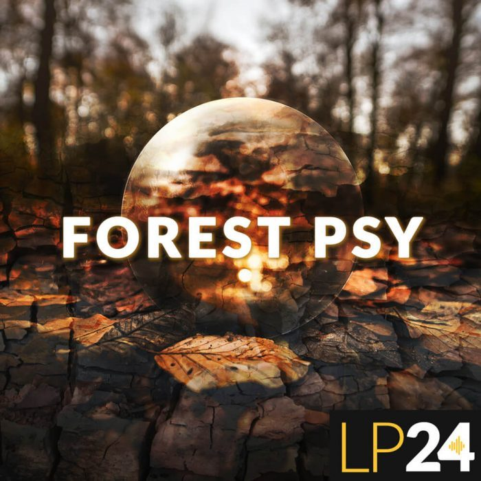 LP24 Forest Psy