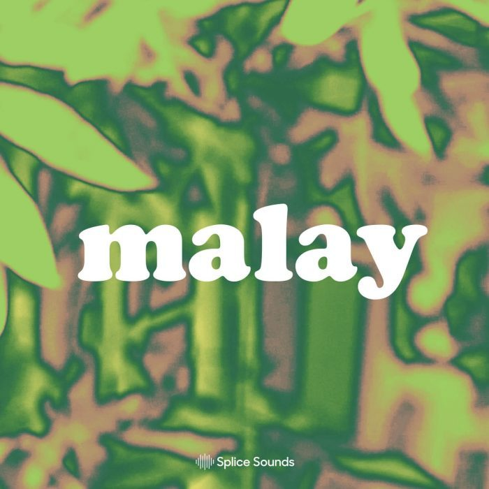 Splice Sounds Malay