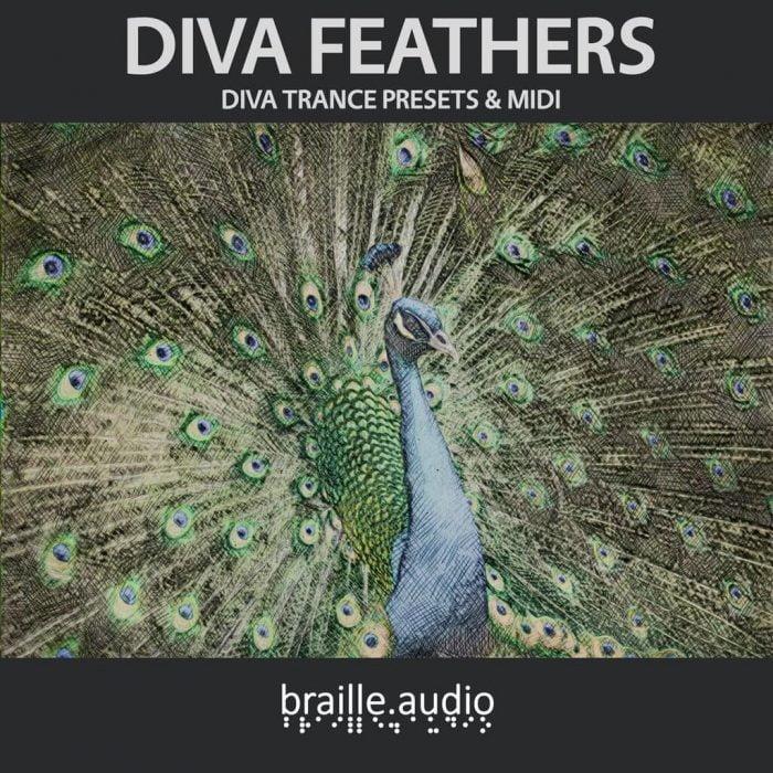 Braille Audio Diva Feathers