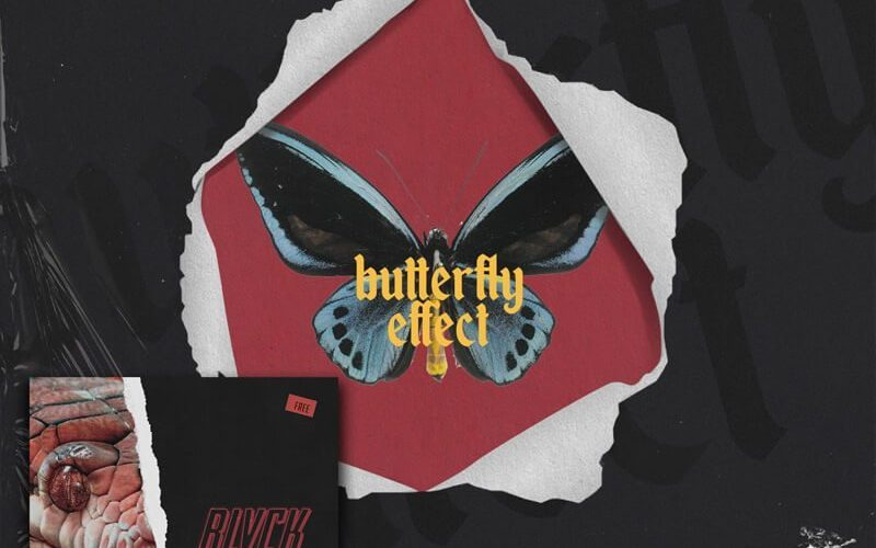 Butterfly Effect Cover Plus Discount Banner