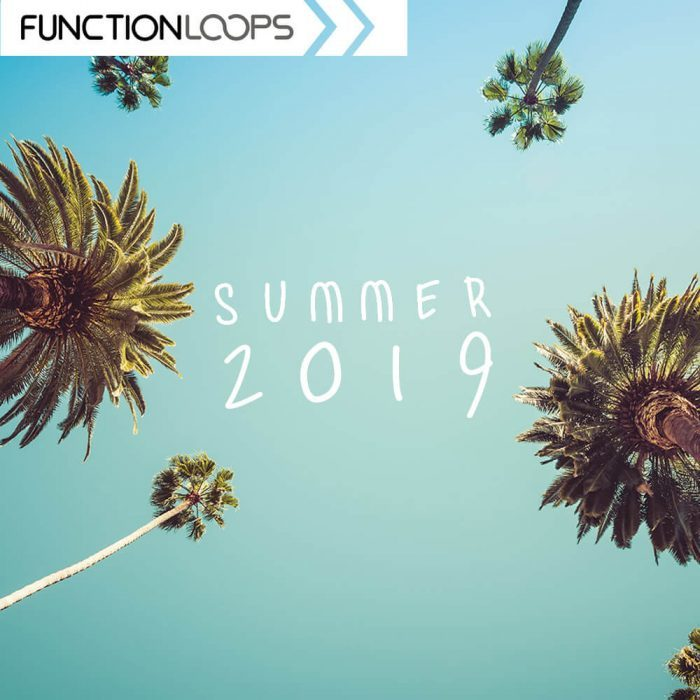 Function Loops Summer 2019