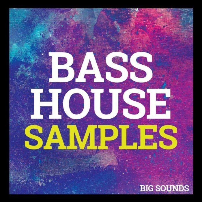 Bass Sounds Big House Samples