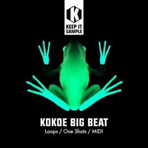 Keep It Sample Kokoe Big Beat