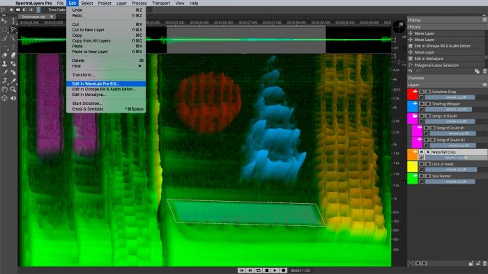 Steinberg SpectraLayers Pro 6 audio editors