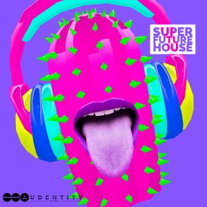 Audentity Records Super Future House