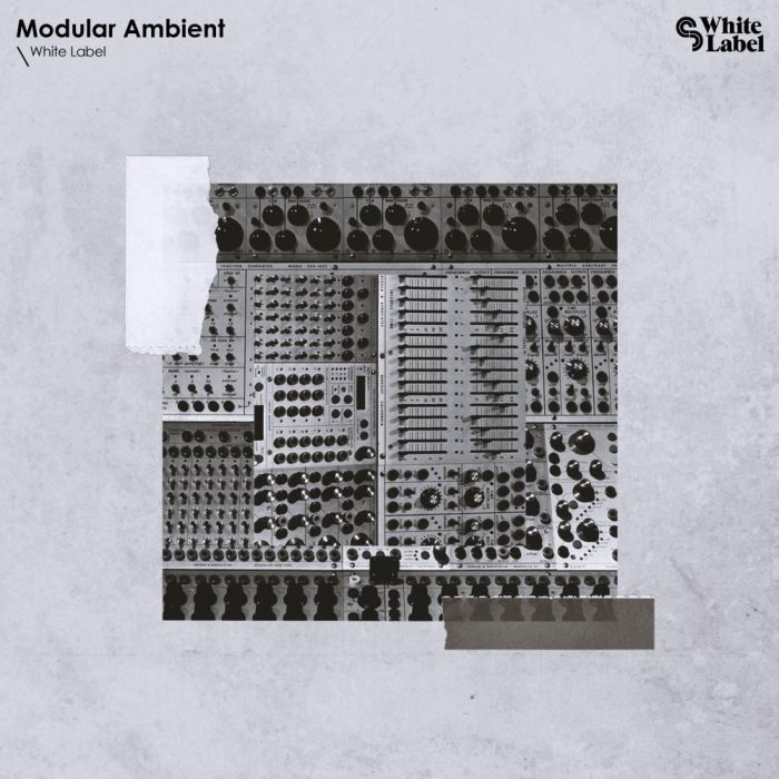 Sample Magic Modular Ambient
