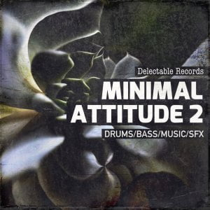 Delectable Records Minimal Attitude 2