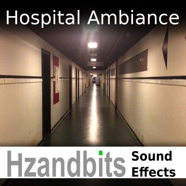 Hzandbits Hospital Ambiance