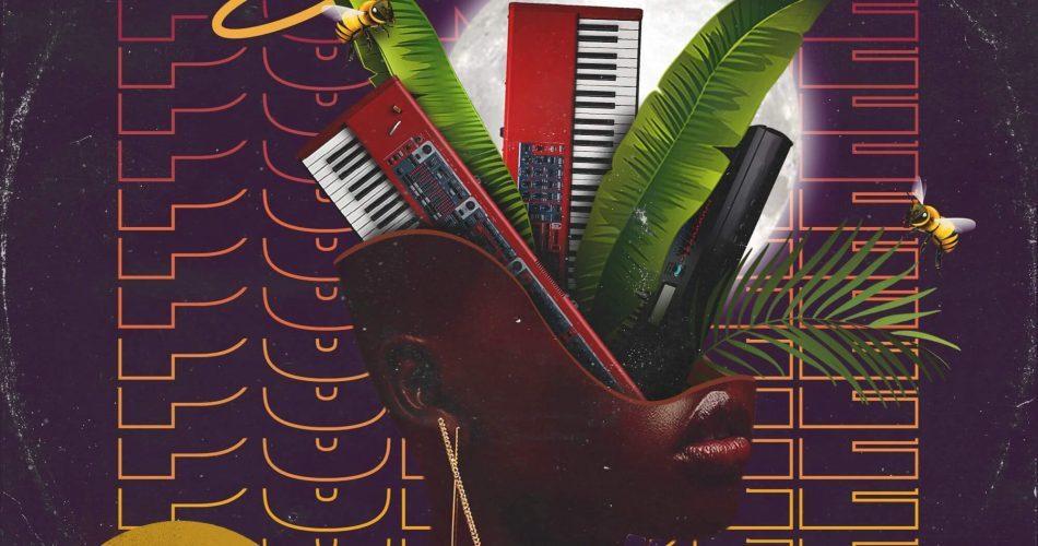 Prime Loops Purple Soul Mellow Melodies