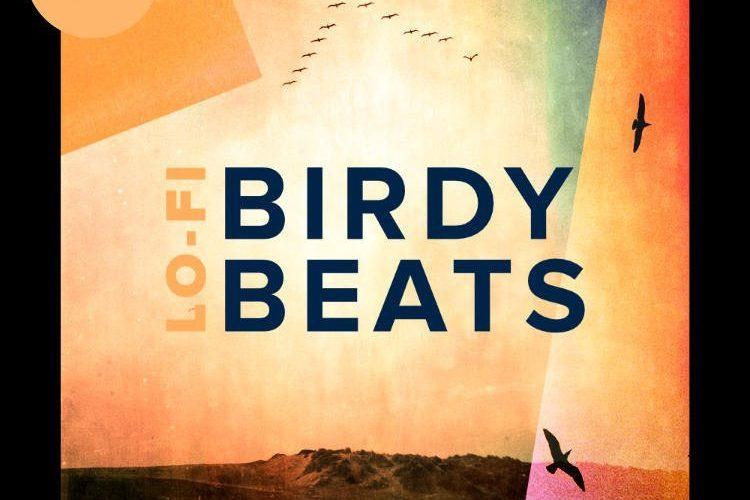 HelloSamples Lo Fi Birdy Beats