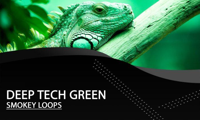 Smokey Loops Deep Tech Green
