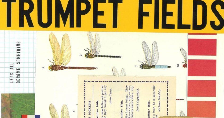 Spitfire LABS Trumpet Fields