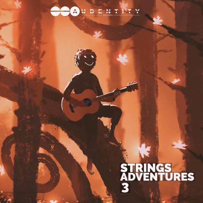 Audentity Records Strings Adventures 3