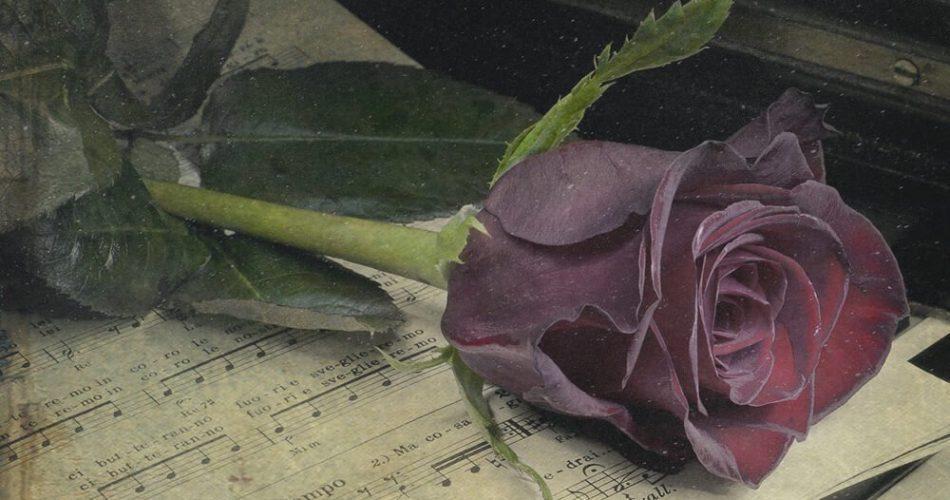 Freaky Loops Romantic Pianos