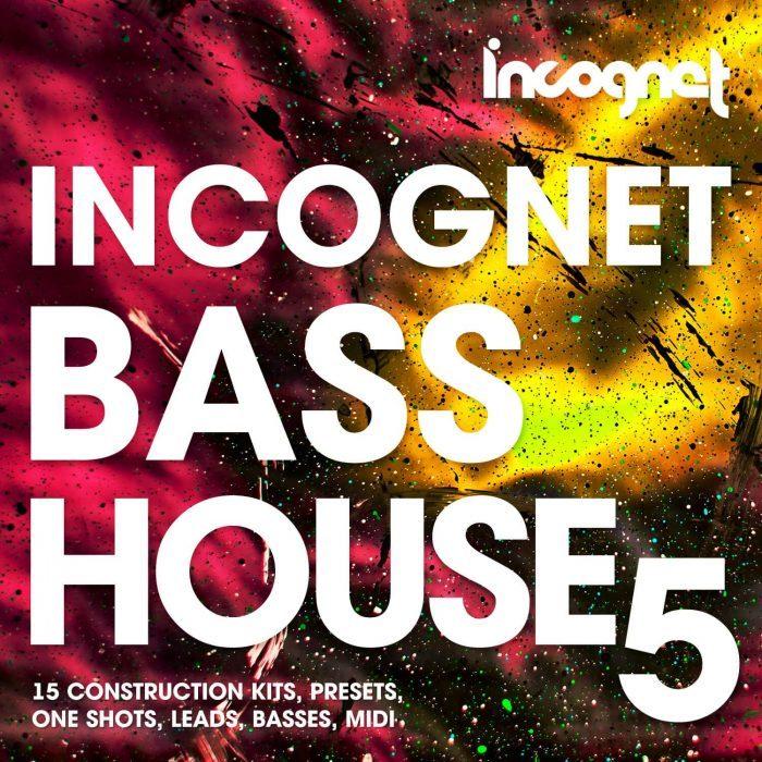 Incognet Bass House 5