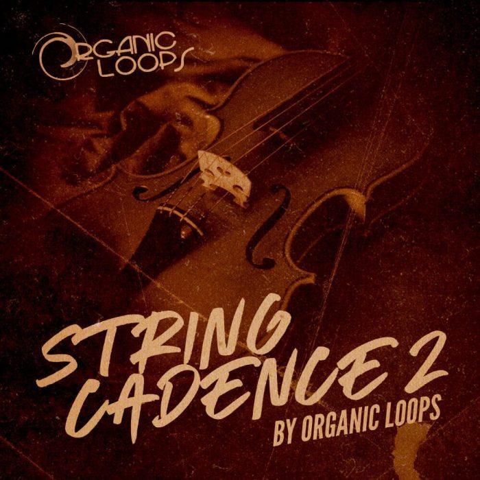 Organic Loops String Cadence 2