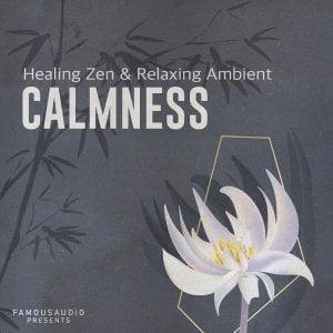 Famous Audio Calmness