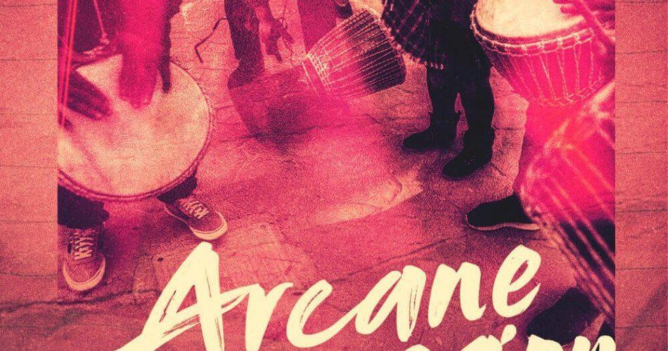Organic Loops Arcane Percussion