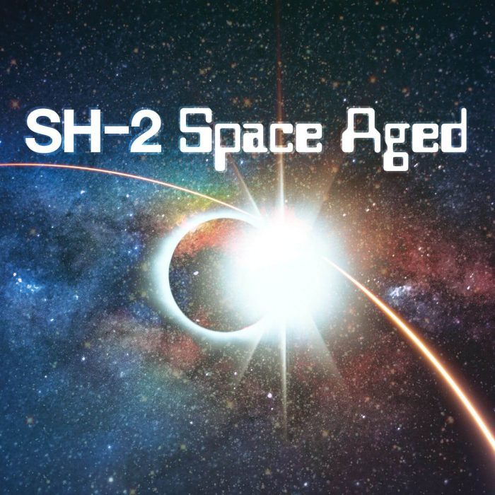Roland SH 2 Space Aged