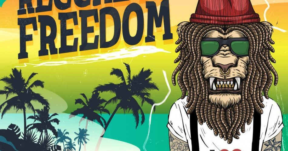 Singomakers Reggaeton Freedom