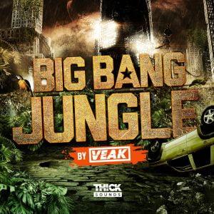 Thick Sound Veak Big Bang Jungle