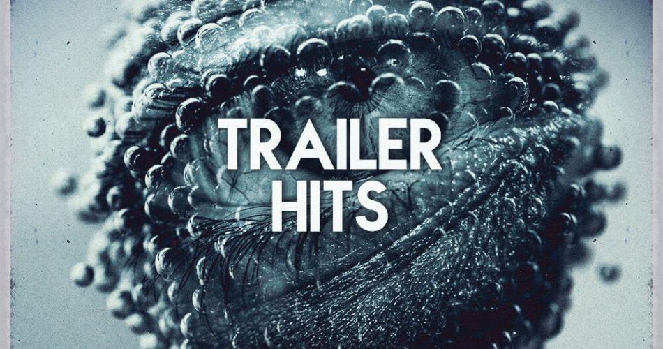 Cinetools Trailer Hits