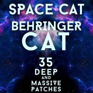 LFO Store Space Cat
