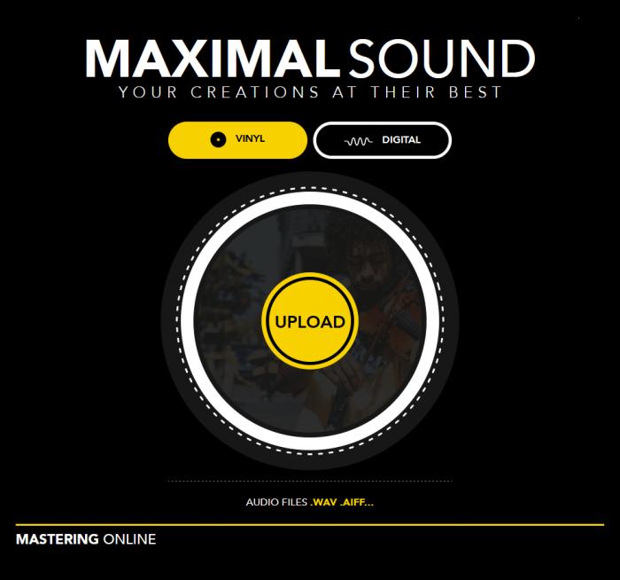 MaximalSound Vinyl