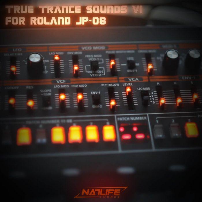 NatLife True Trance V1 Roland JP08