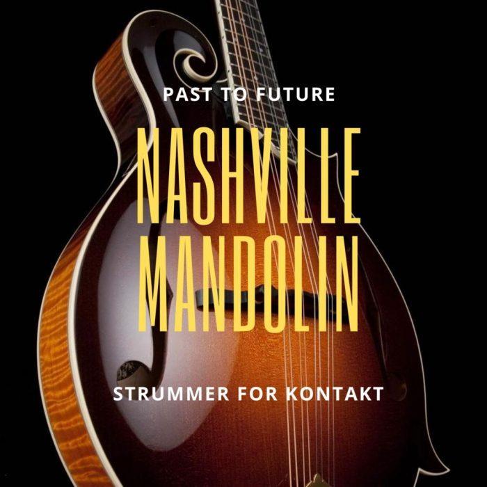 Past To Future Nashville Mandolin Strummer