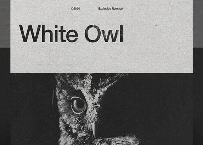 AngelicVibes White Owl Trap Sample Pack