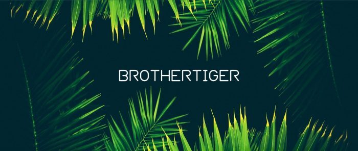 Brothertiger Patch Collections