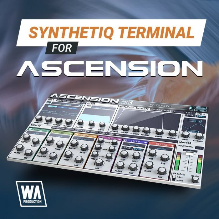 WA Synthetic Terminal for Ascension