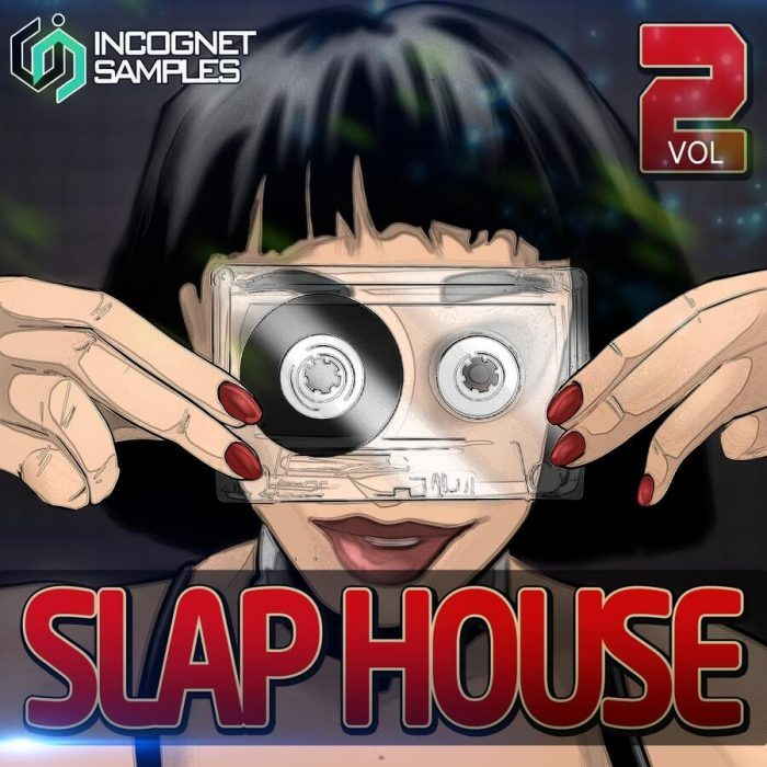 INCOGNET SLAP HOUSE 2