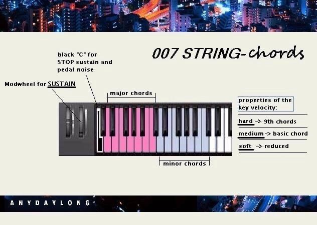 AnyDayLong 007 String Chords