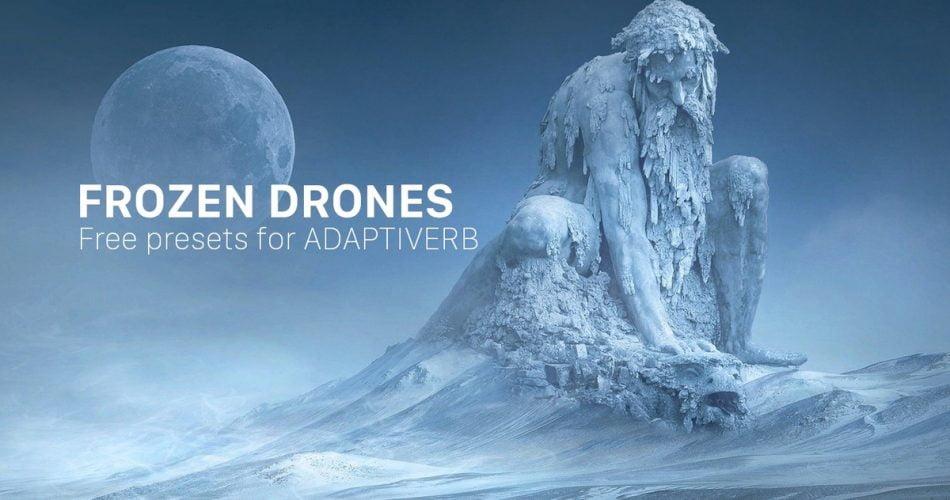 Frozen Drones