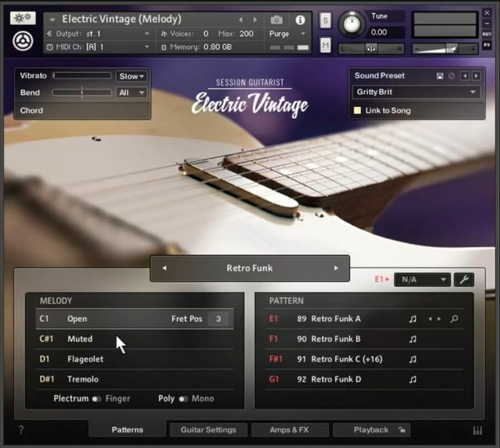 NI Session Guitarist Electric Vintage GUI