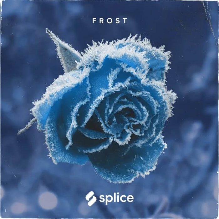 Splice Frost