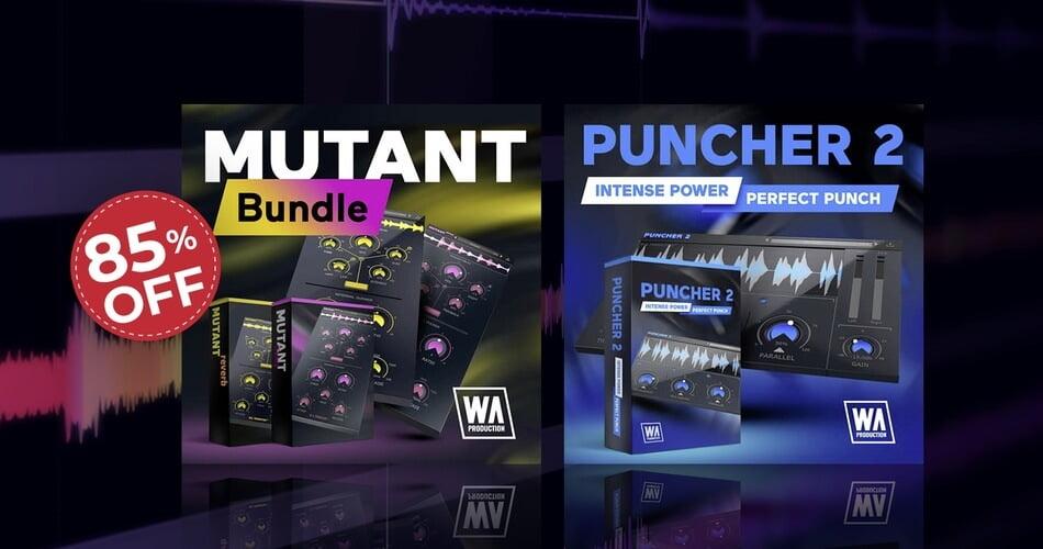 WA Punch the Mutant