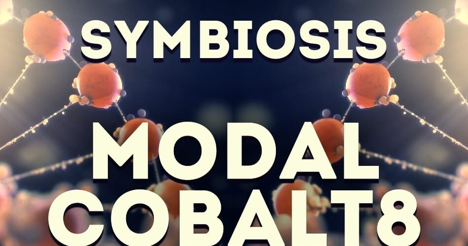 LFO Store Symbiosis Modal Cobalt8