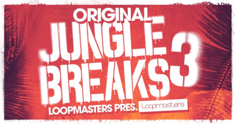 Loopmasters Original Jungle Breaks 3