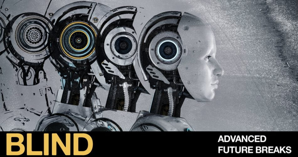 Blind Audio Advanced Future Breaks