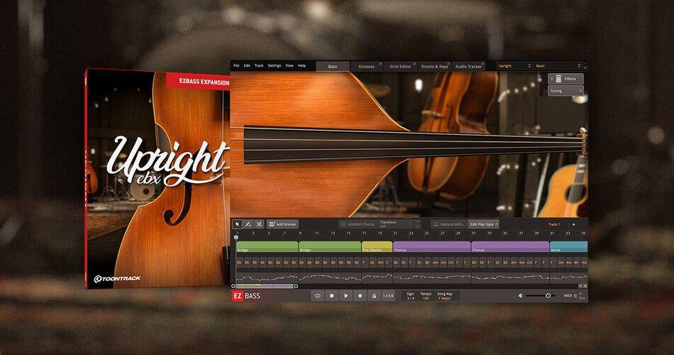 Toontrack Upright Bass EBX